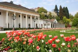 Экскурсии по Баден Бадену, Экскурсии в Баден Бадене, Экскурсоводы по Баден Бадену, гиды в Баден Бадене, гиды по Баден Бадену